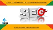There Is Do Dearth Of SEO Service Providers